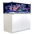 Red Sea REEFER™ XL 425 - White