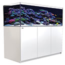 Red Sea REEFER  XL 525 - White