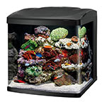 Coralife LED BioCube 32 Aquarium System