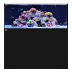 WATERBOX REEF 130.4 BLACK