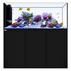 WATERBOX PENINSULA 6026 BLACK