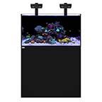 WATERBOX REEF 100.3 +PLUS HD EDITION BLACK