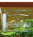 Toms Aquarium Baby Nursery for Live Bearers