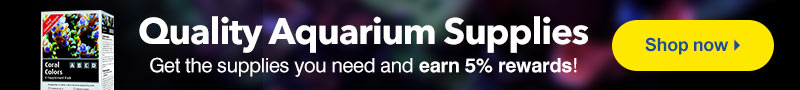Quality Aquarium Supplies