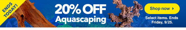 Save on Aquascaping