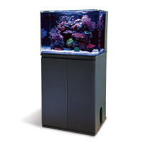 Aquariums, Stands and Canopies