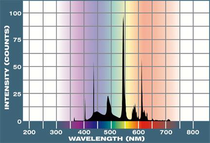 Liveaquaria Approved Aquatic Supplies Life Glo 2 Fluorescent Light