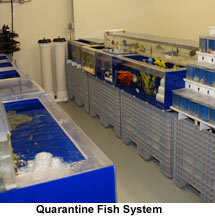Fish Quarantine System