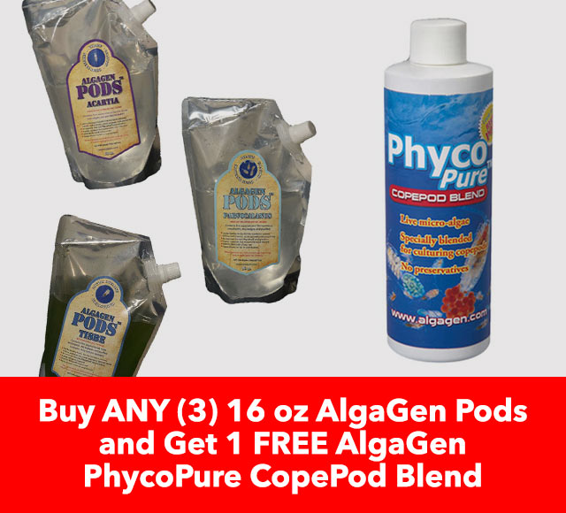 Free AlgaGen PhycoPure Copepod Blend