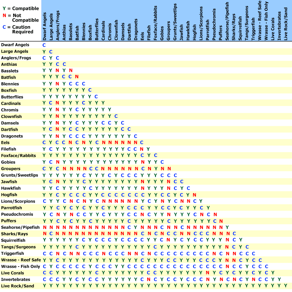 Compatibility charts for marine freshwater aquatic life for Freshwater fish compatibility