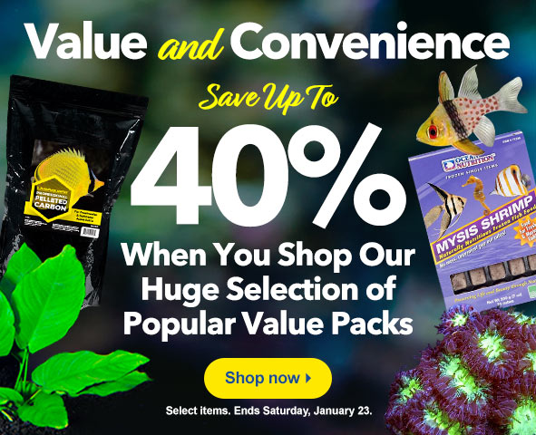 Save up to 40% on Popular Value packs