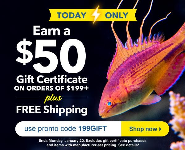 Earn a $50 Gift Certificate on orders $199+