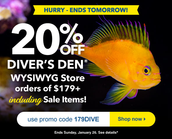 Save 20% on Divers Den orders $179+