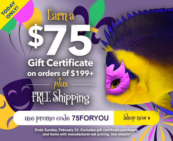 Earn a $75 Gift Certificate on orders $199+