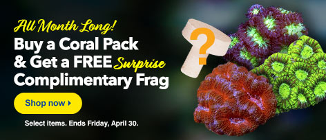 Free Frag with Coral pack