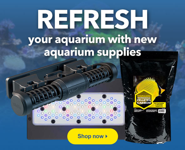 NEW Aquarium Supplies now available