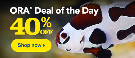 ORA Deal of the Day
