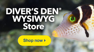 Shop Diver's Den WYSIWYG Store