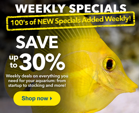 Weekly Specials up to 30% Off