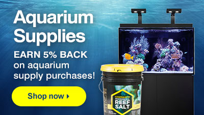 Liveaquaria Quality Aquarium Fish Supplies Equipment