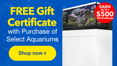 FREE Gift Certificate with Purchase of Select Aquariums