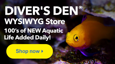 LiveAquaria | Quality Aquarium Fish, Supplies & Equipment