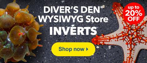 Diver's Den WYSIWYG Store Inverts