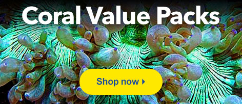 Coral Value Packs