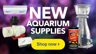 New Aquarium Supplies