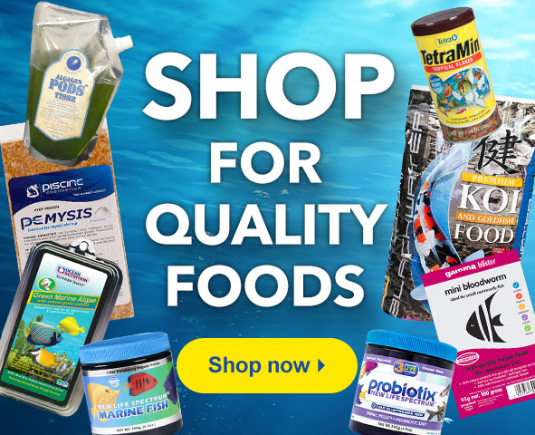 Shop for Quality Foods