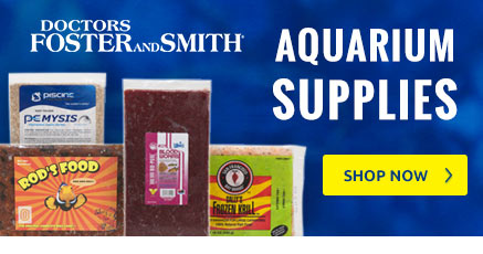 Shop Aquarium Supplies