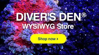 Diver's Den WYSIWYG Store. Browse now