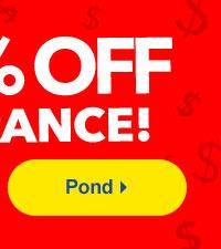 Pond Clearance