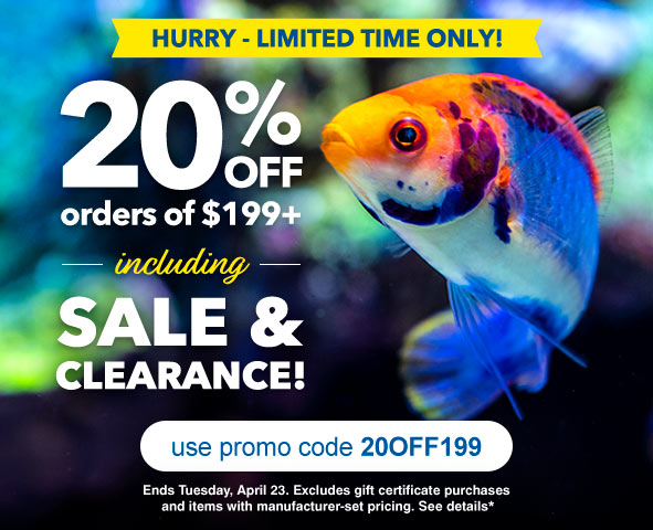 Site Wide Savings on Aquatic Life and Aquarium Supplies  with Code 20OFF199 When you  Shop LiveAquaria