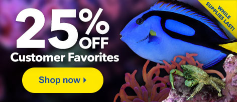 25% OFF Customer Favorites Our best-selling aquatic life is on sale for 25% OFF.