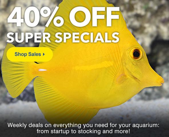 Aquatic Life and Supplies on Sale at LiveAquaria