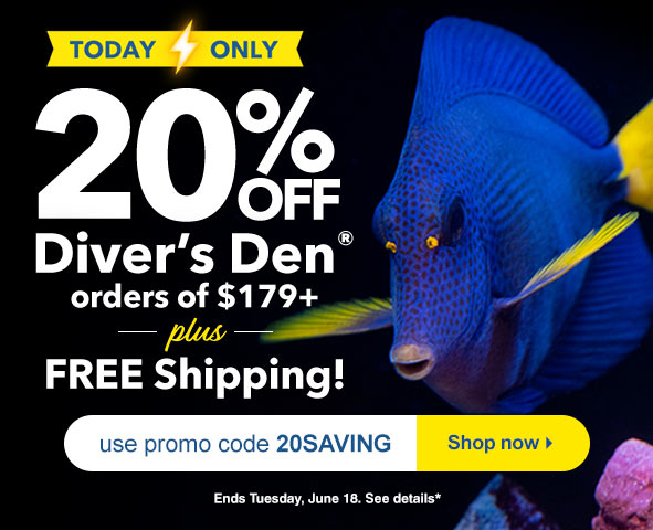 LiveAquaria® Diver's Den® WYSIWYG Store Items on Sale for One Day Only.