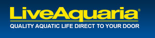 LiveAquaria.com - Quality Aquatic Life Direct To Your Door.
