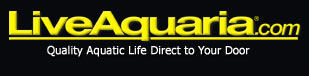 Tank Cleaner Packages for Saltwater Aquariums